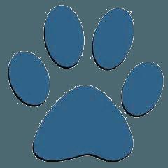 Sheffield  Dog Walking | Pawsitive Walks